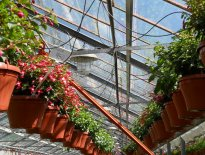 Ekoplant, Banská Bystrica - zavlažovanie v skleníkoch